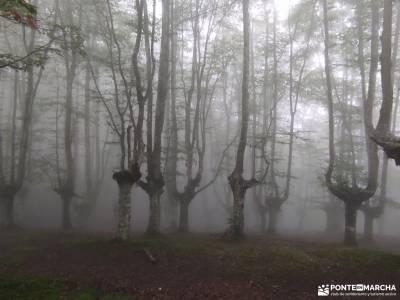 Parque Natural de Urkiola;quedadas singles madrid experiencias en madrid la pedriza charca verde exc